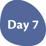 Day-7