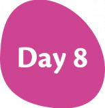 Day-8
